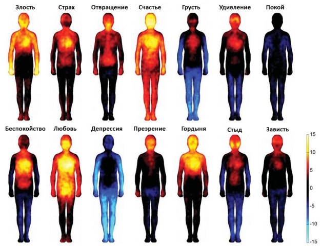 emotion-heatmap-body